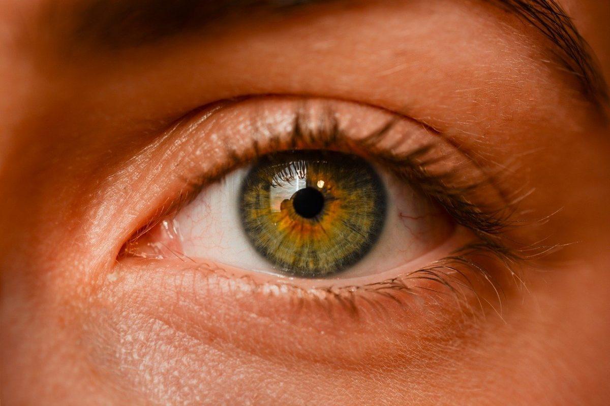 Oczy to niezwykły organ. To właśnie dzięki nim doświadczamy.